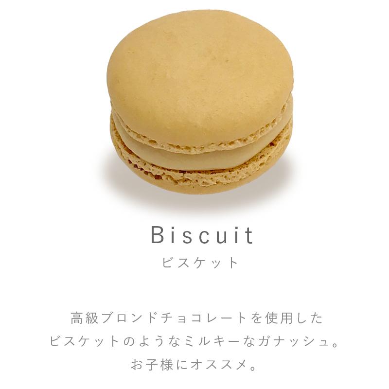 Pfm03 1flavor biscuit