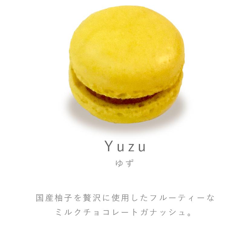 Pfm04 1flavor yuzu
